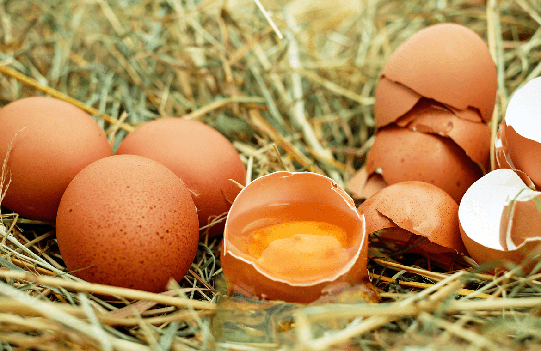 ¿Es bueno consumir un huevo al día?