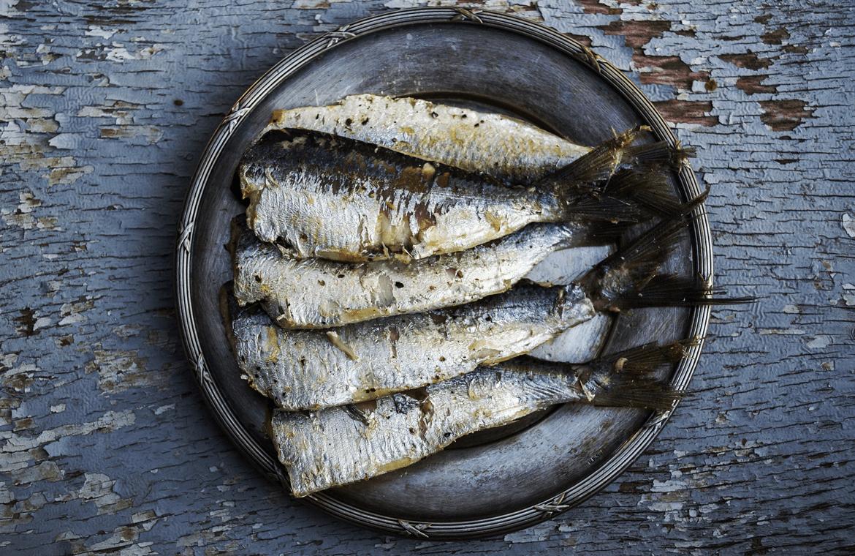 Pescado blanco o azul, ¿cuál eliges?