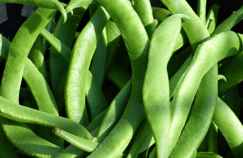 Lo mejor de incluir judías verdes en tu dieta