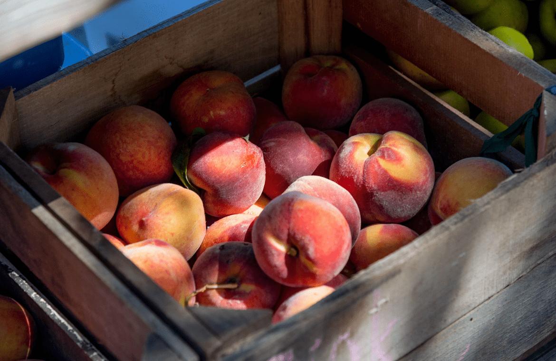 El melocotón, una sabrosa fruta de temporada