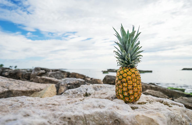 Cinco frutas tropicales para incluir en tu dieta