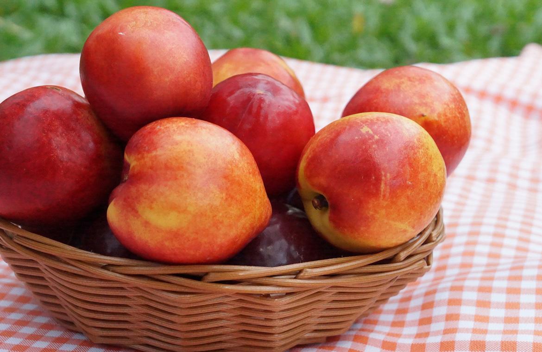 Lo mejor de la nectarina, una fruta de verano